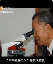 中国盐藻网