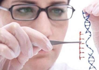 盐藻与基因工程