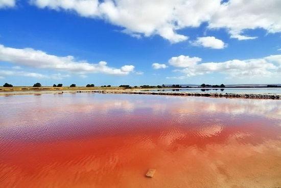 南非红色的盐田